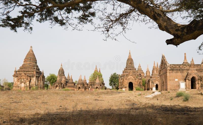 Bagan MYANMAR - APRIL 25: Tempel i Bagan Myanmar arkivfoton