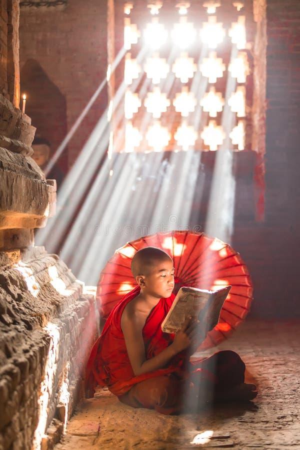 BAGAN, MYANMAR - 20 DE FEBRERO: Pra joven no identificado de los novatos del budismo fotos de archivo