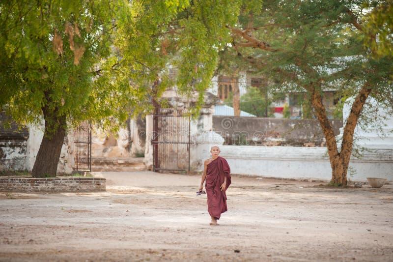 BAGAN, MYANMAR - MAI 3,2013 : Promenade non identifiée de débutant de bouddhisme photo stock