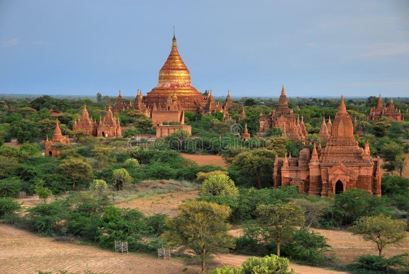 bagan myanmar tempel arkivbild