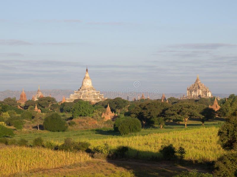 Bagan oude stad stock foto
