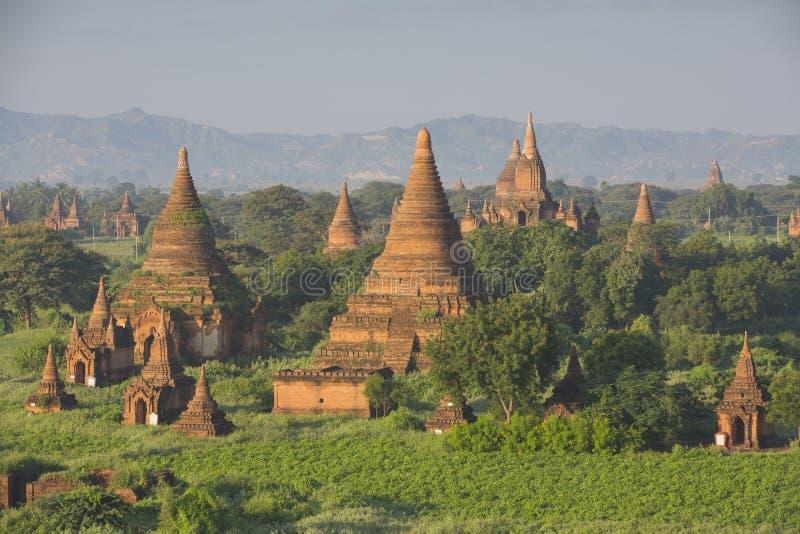 Bagan pagod i Myanmar arkivbilder