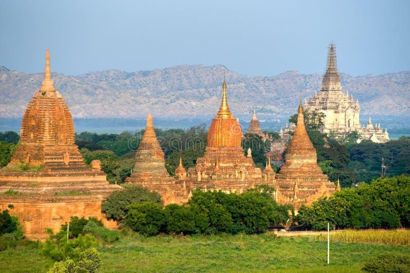 bagan pahto pagodas myanmar gawdawpalin стоковая фотография
