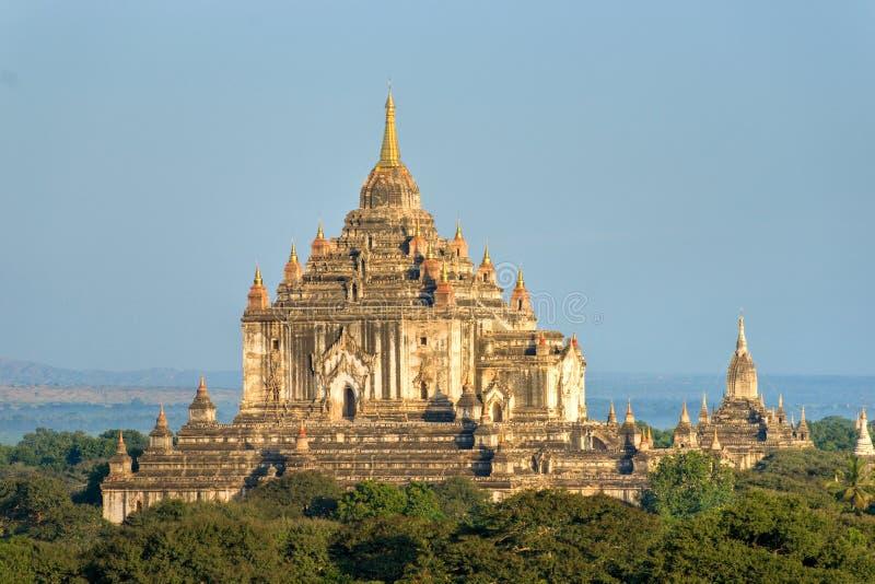 Bagan, tempiale dopo alba, Myanmar di Thatbyinnyu. immagini stock