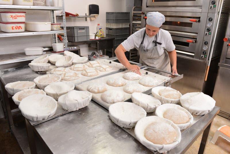 Bagare som gör handgjorda loaves av bröd i ett familjbageri som formar degen in i tradional, formar i Sofia, Bulgarien på Septemb arkivfoto