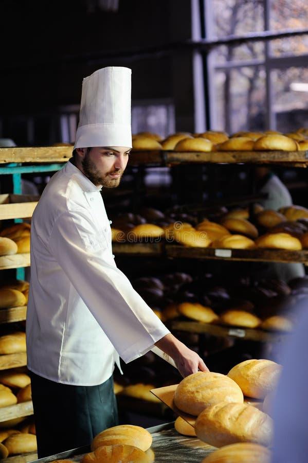 Bagarehandtag ut ur det nya brödet för ugn royaltyfria bilder