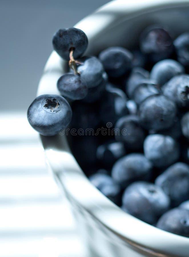 Bagas azuis naturais fotografia de stock