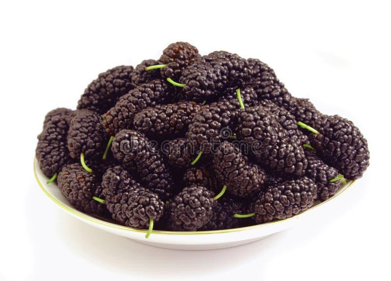 Bagas da árvore de Mulberry em um saucer foto de stock royalty free