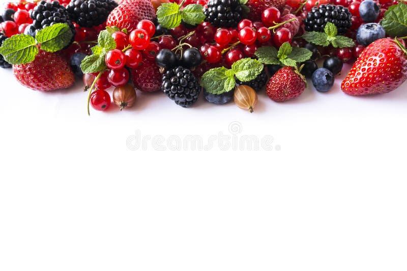 Bagas da mistura em um fundo branco Corintos vermelhos maduros, morangos, amoras-pretas, mirtilos, groselhas, groselhas com MI fotos de stock