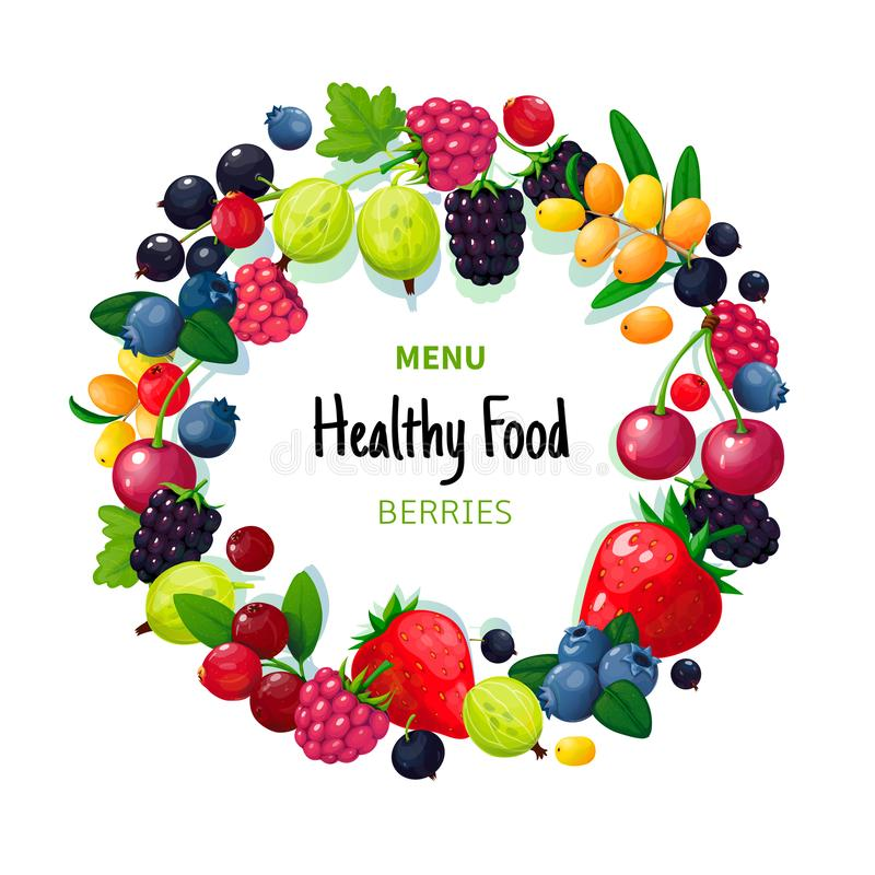 Bagas e frutos orgânicos frescos do verão Framboesa da amora-preta da groselha do mirtilo da morango Café saudável do vegetariano ilustração do vetor