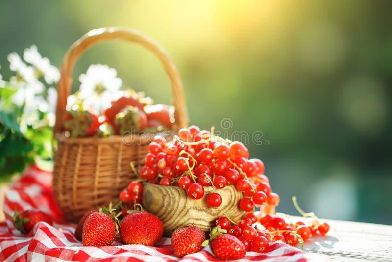 Bagas maduras - os corintos vermelhos, morangos, groselhas em uma tabela de madeira no verão jardinam verão da colheita ainda imagem de stock