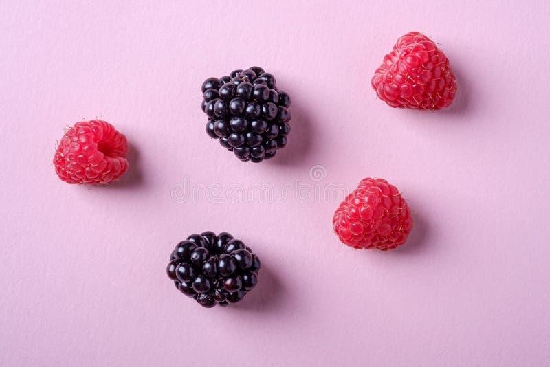 Bagas suculentas orgânicas doces da framboesa e da amora-preta cinco no fundo de papel cor-de-rosa, espaço da cópia imagens de stock