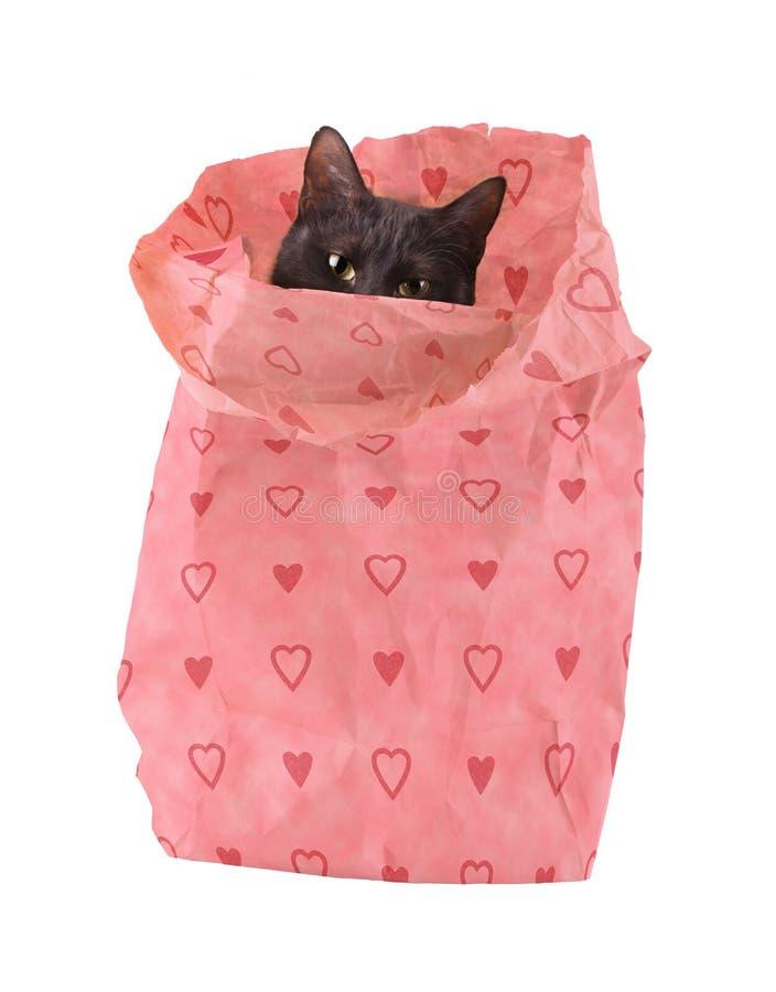 Bagful del amor - un gato negro que mira a escondidas de una bolsa de papel imagen de archivo libre de regalías