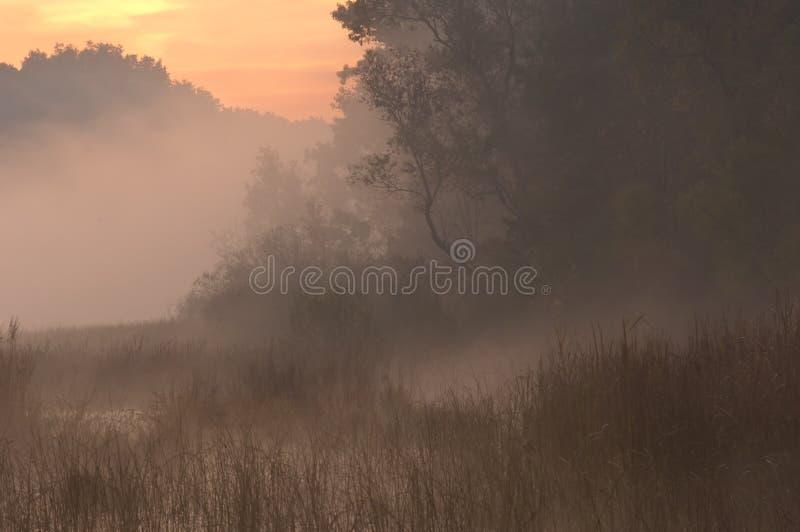 bagna jesiennej wschód słońca zdjęcie royalty free