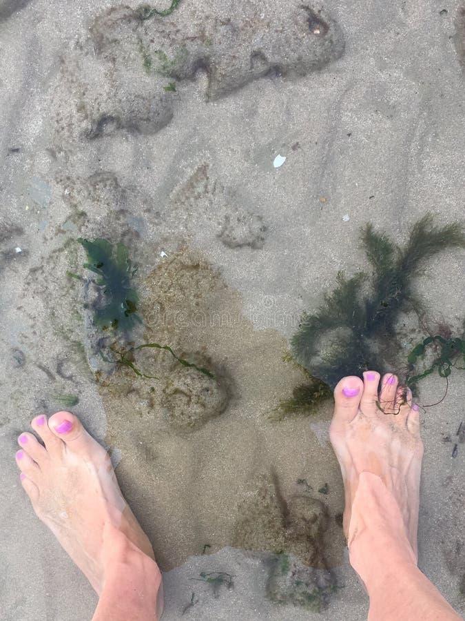 Bagnando i piedi nel mare fotografie stock