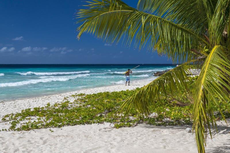 Bagnino sulla spiaggia di Rockley, Barbados fotografie stock libere da diritti
