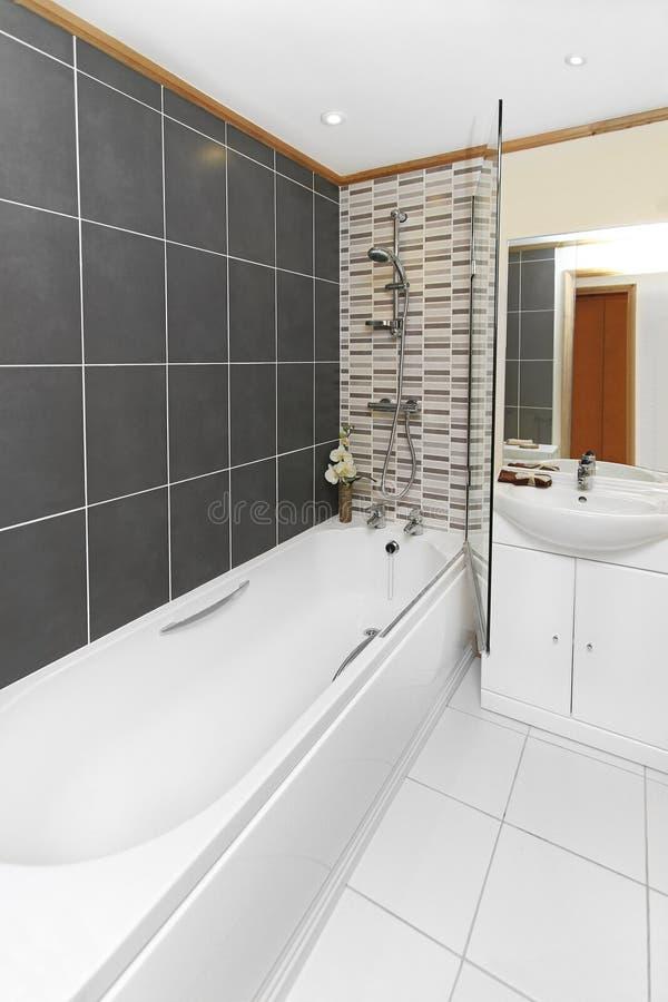 Download Bagno immagine stock. Immagine di bathroom, toletta, armadietto - 30826977