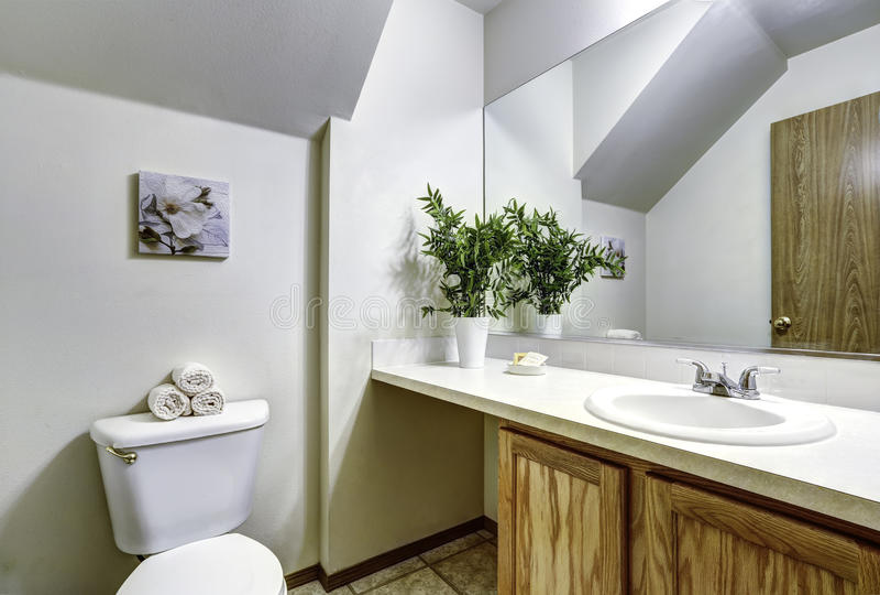 Bagno bianco con il soffitto arcato immagine stock - Luce soffitto bagno ...