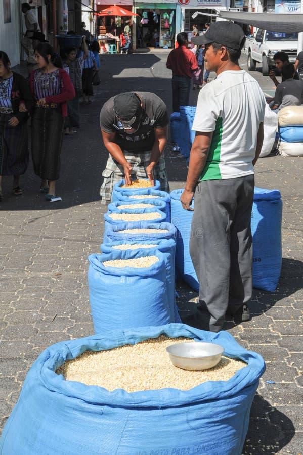 Bags of corn at Santiago de Atitlan. Two person with bags of corn at Santiago de Atitlan on Guatemala, 11 February 2014 stock image