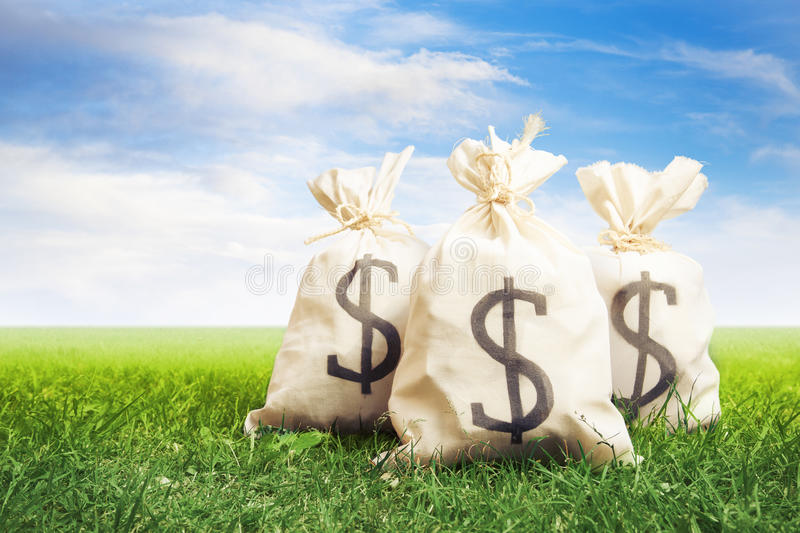 Bags full of money on grass royalty free stock photo