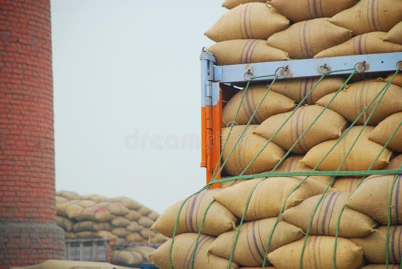 bags paddy royaltyfria foton