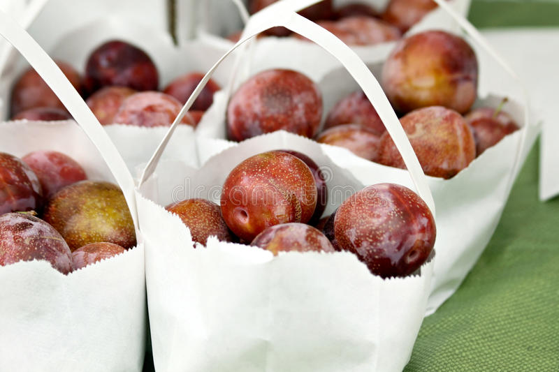 Download Bags of Plums stock photo. Image of farming, juicy, produce - 21224892