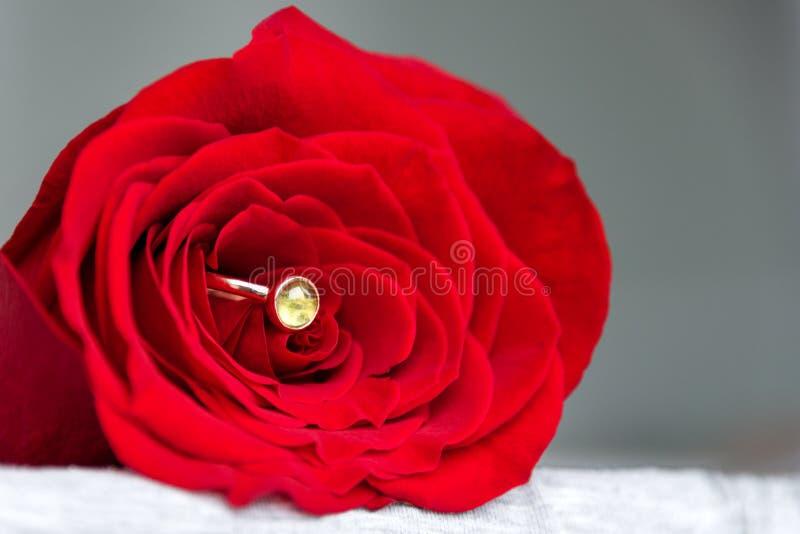 Bague de fiançailles de scintillement à l'intérieur de rose de rouge Cadeau romantique pour le jour de valentines Concept de prop photographie stock