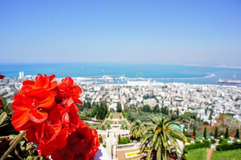 Bahà ¡ ` Ã庭院以色列,海法 免版税库存照片