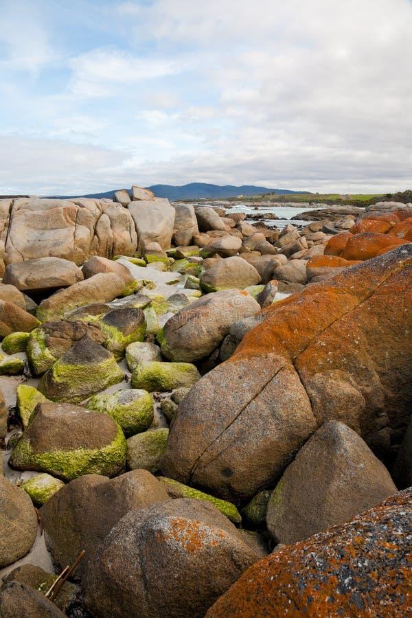 Bahía de fuegos en Tasmania fotos de archivo libres de regalías