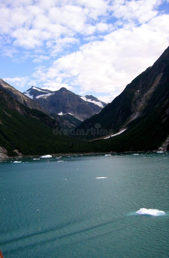 Bahía De Glaciar, Alaska Fotografía de archivo libre de regalías