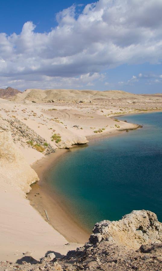 Bahía de la tortuga en Egipto fotografía de archivo
