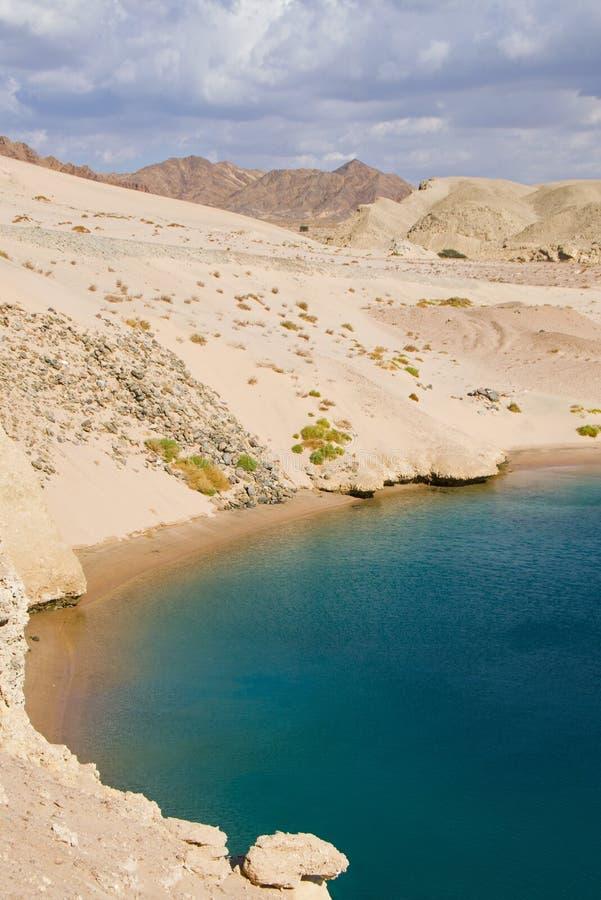 Bahía de la tortuga en Egipto fotos de archivo