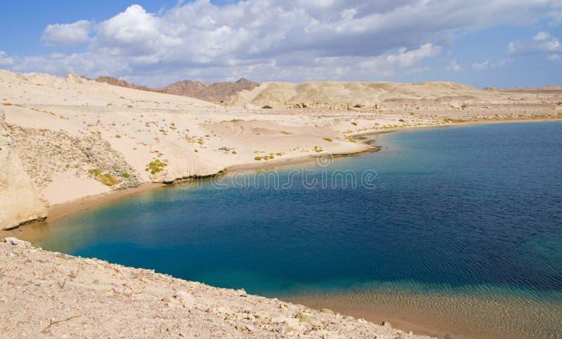 Bahía de la tortuga en Egipto foto de archivo