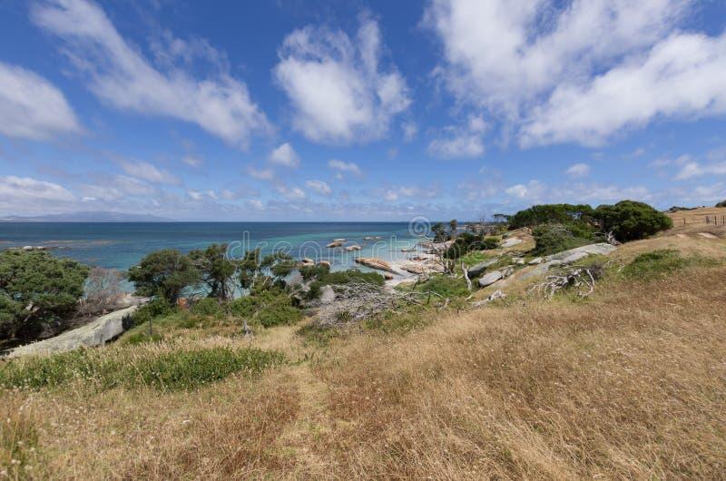 Bahía de los aserradores, isla del Flinders, Tasmania imagen de archivo libre de regalías