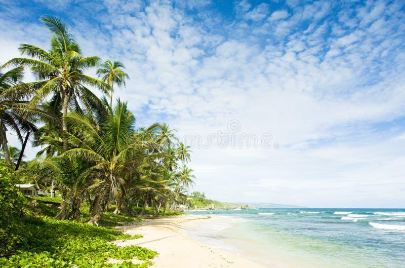 Bahía de Martin, Barbados imagenes de archivo