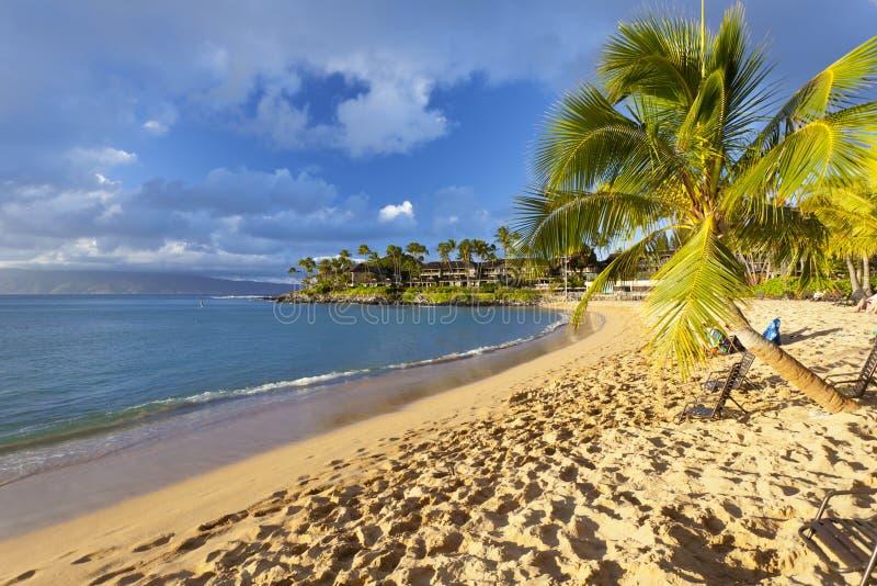 Bahía de Napili, Maui, Hawaii fotografía de archivo