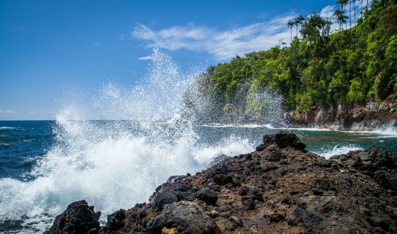 Bahía de Onomea de Hawaii en la costa de Hamakua en un día hermoso con salpicar de la onda imagenes de archivo