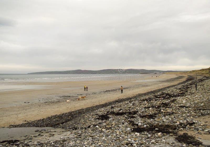 Bahía de Tralee en el filamento de Banna fotografía de archivo