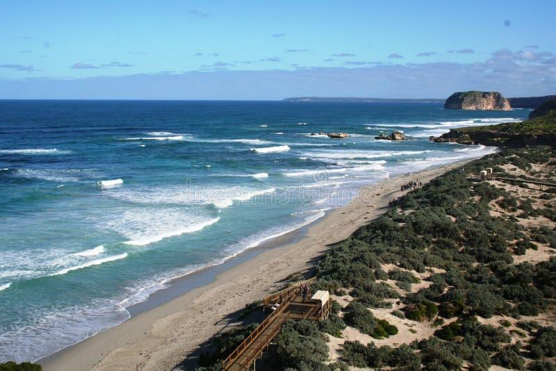 Bahía del sello, isla del canguro, sur de Australia foto de archivo