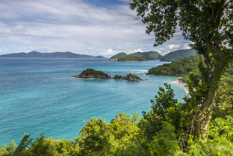 Bahía del tronco, St John, U S Islas Vírgenes imágenes de archivo libres de regalías
