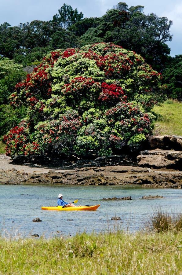 Bahía laguna de las islas - isla de Roberton fotografía de archivo libre de regalías
