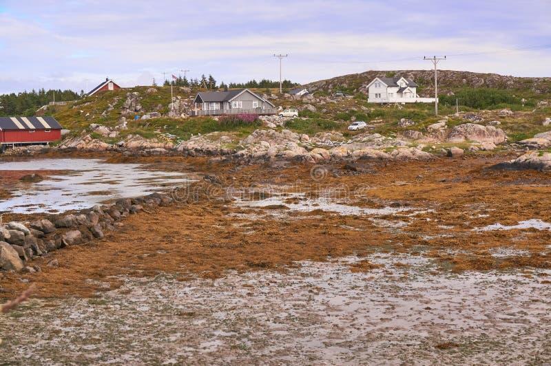 Bahía noruega durante la bajamar fotografía de archivo libre de regalías