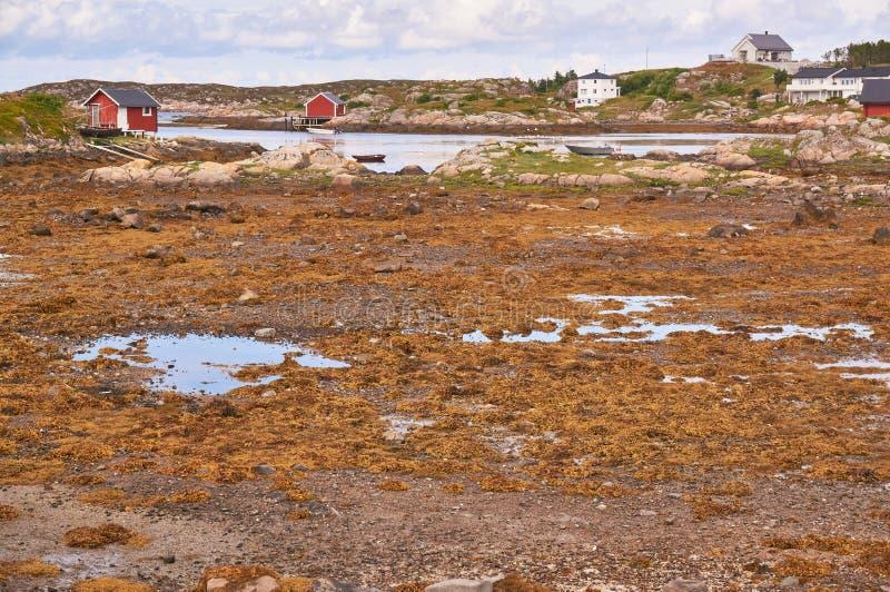 Bahía noruega durante la bajamar imagen de archivo