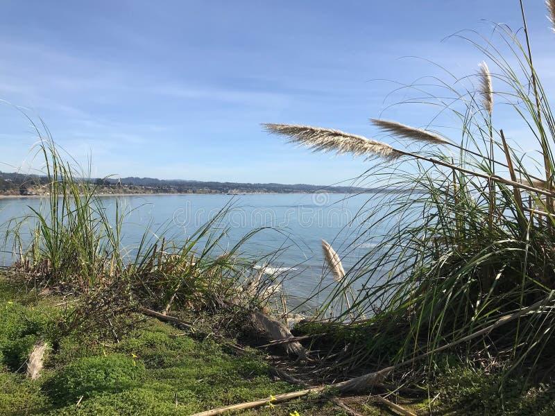 Bahía a través de hierbas de la playa imagen de archivo libre de regalías