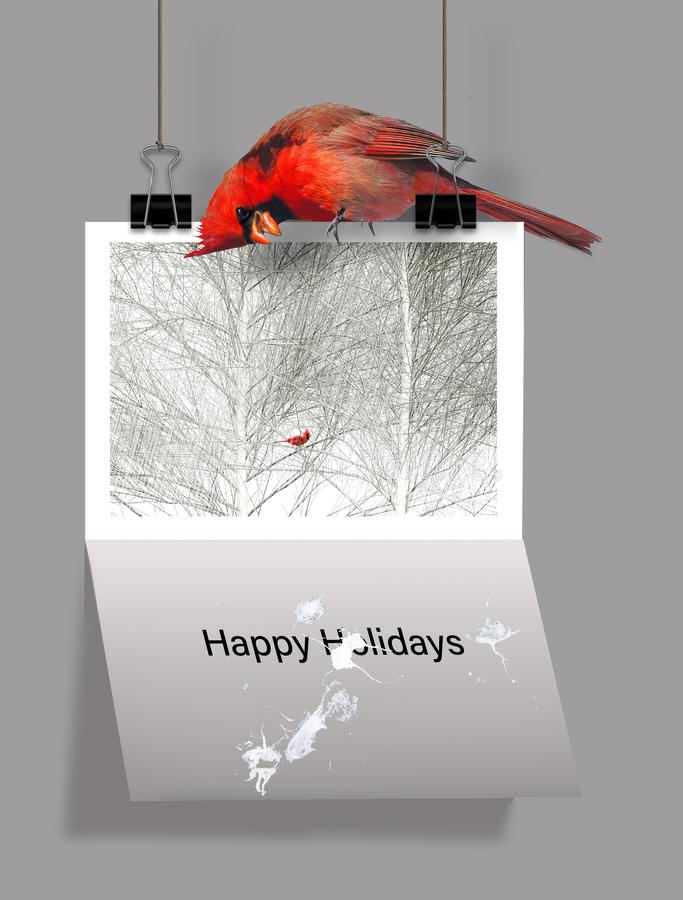 Bah欺骗!这不喜欢节日的人的一个例证 一位红色主教在圣诞卡片上面坐那 向量例证