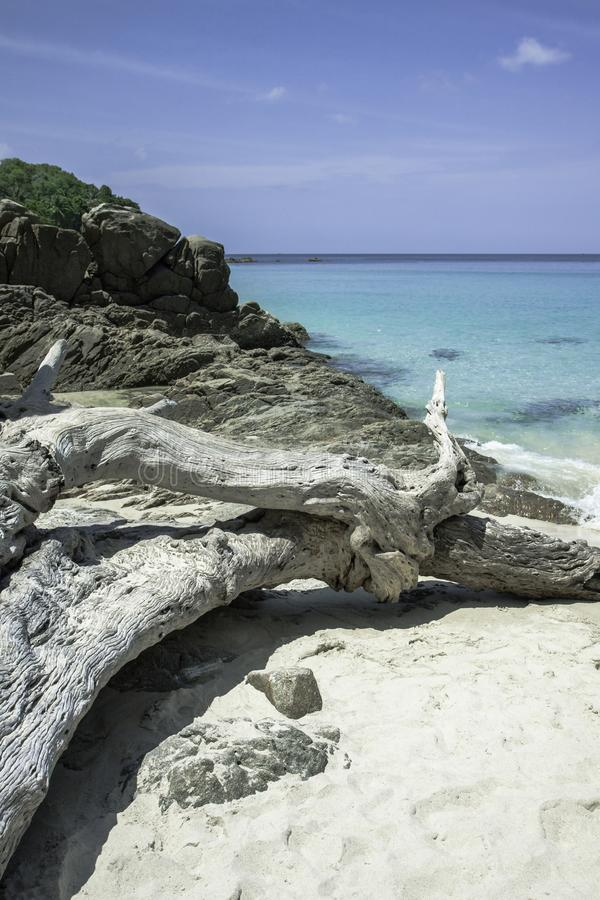 Bah?a azul del mar Agua de mar transparente azul Playa blanca de la arena y ?rbol caido viejo imagenes de archivo
