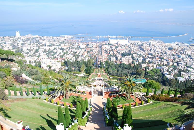 bahaien arbeta i trädgården haifa israel fotografering för bildbyråer