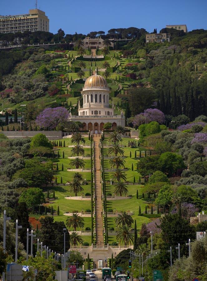 Bahaien arbeta i trädgården i Haifa royaltyfri fotografi