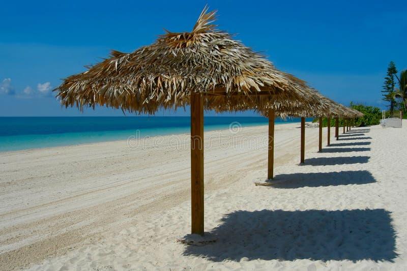 Bahamas. Beach umbrellas in Freeport beach, Bahamas islands stock images