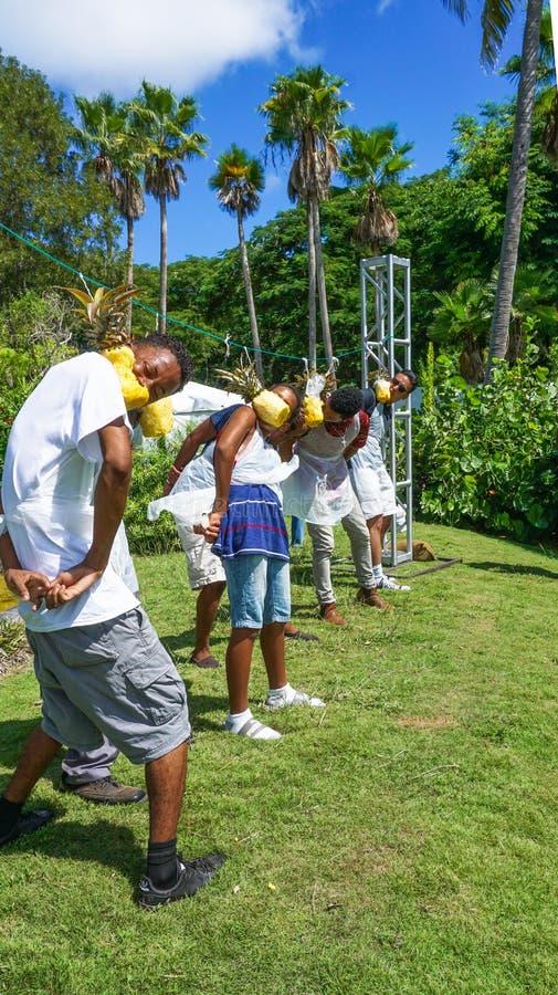 Bahamas, abacaxi que come a competição, feira da queda, fotos de stock